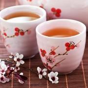 Fehér tea - a természet csodaszere