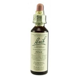 Bach virágesszencia - erdeifenyő (Pine)